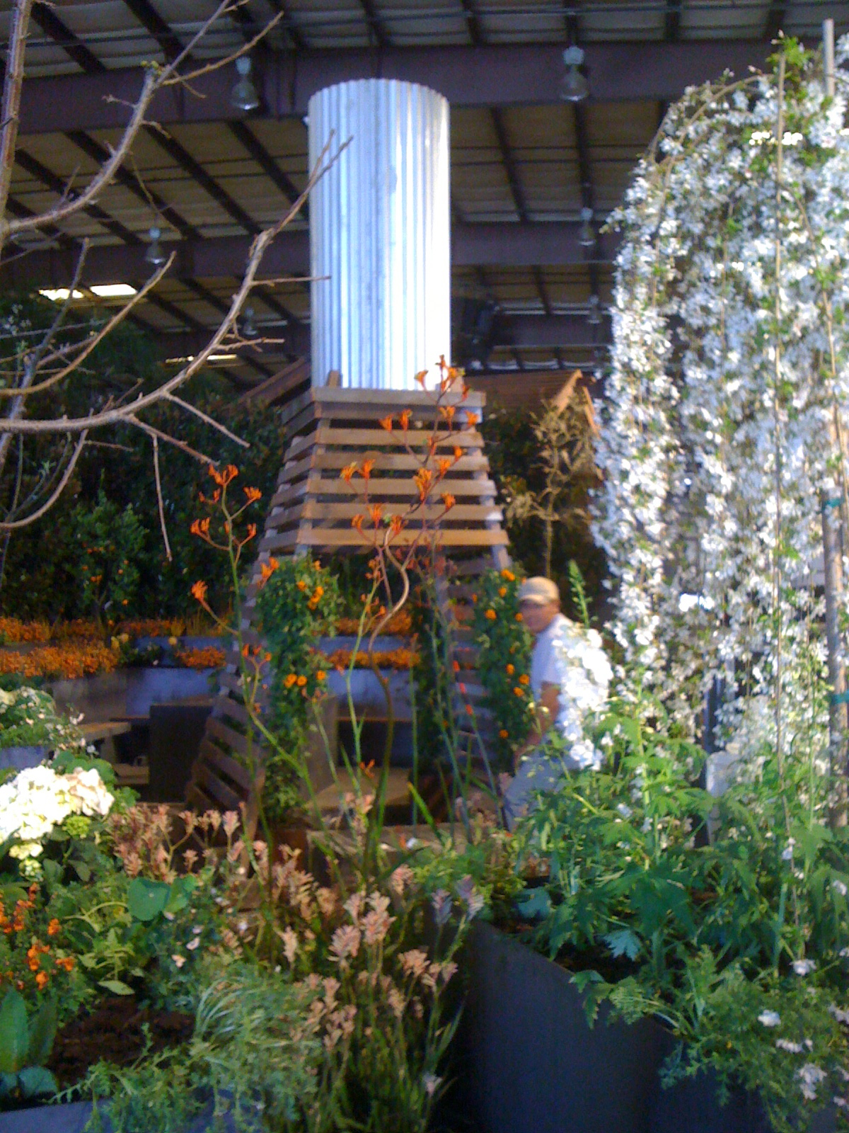 Img 3817 sonoma landscape design for Sonoma garden designs
