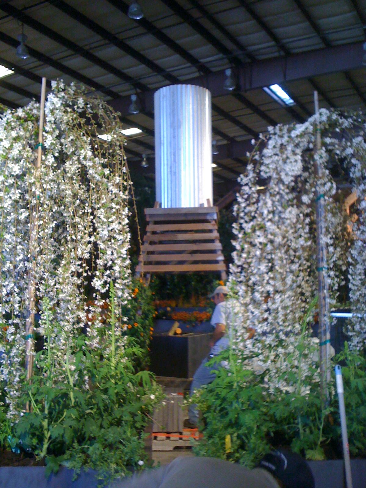 Img 3818 sonoma landscape design for Sonoma garden designs