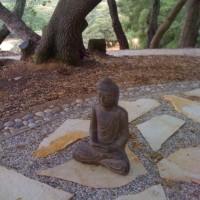 California  Zen Garden