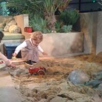 Kids in the sandbox in the show garden