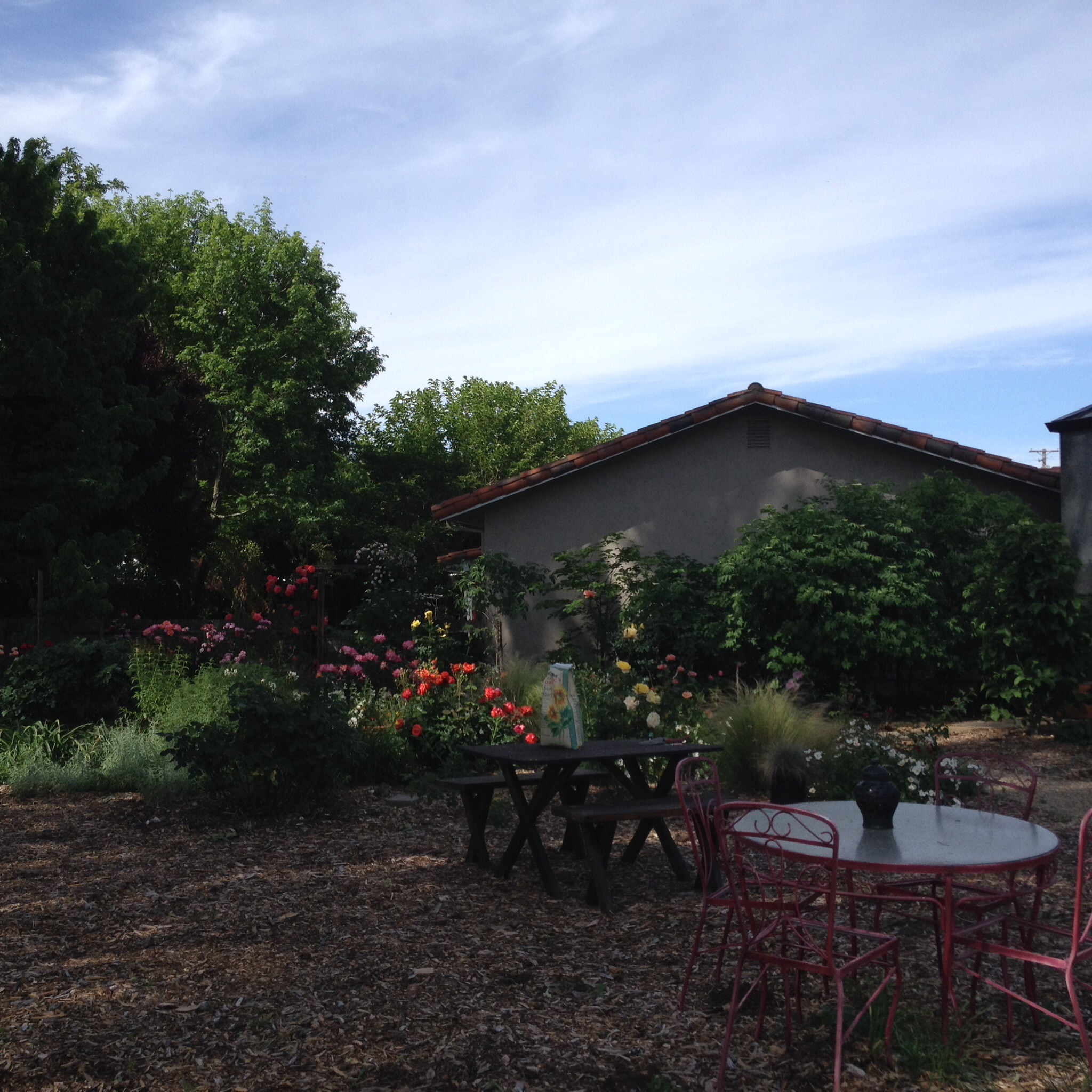 Landscaping Mulch Regina : Sonoma landscape design and architecture regina rollin on